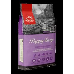 ORIJEN Puppy Large | Croquettes pour chiot de grande taille | Sans céréales | 11.4 kg