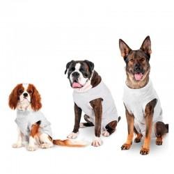 Karlie | Body de soin pour chien | Gris