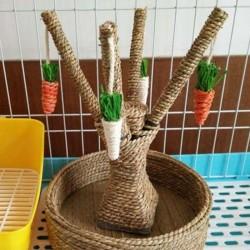 Arbre à carotte Bunny Fun Tree