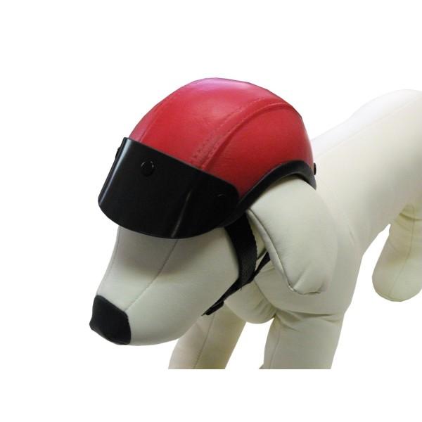 Casque de moto pour chien distridog - Casque de motocross ...