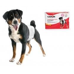 Camon | 12 couches jetables pour chien mâle