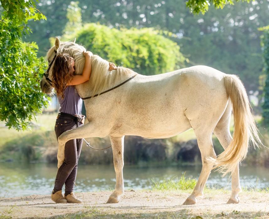 Le bien-être du cheval, condition essentielle d'une bonne santé
